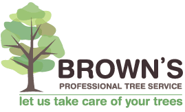 <p> Experienced, reliable and professional<br /> • Free quotes<br /> • Fully insured</p>