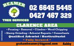 BE AMER TREE SERVICES 02 6645 5445 0427 467 329 3954929ab CLARENCE AREA * Pruning * Removal * Cli...