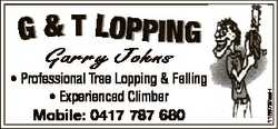 G & T LOPPING 1185737aaH Garry Johns * Professional Tree Lopping & Felling * Experienced Cli...