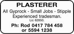 PLASTERER