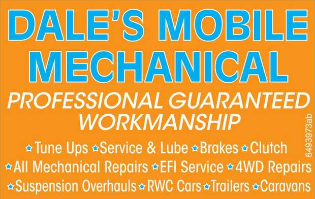 PROFESSIONAL GUARANTEED WORKMANSHIP 