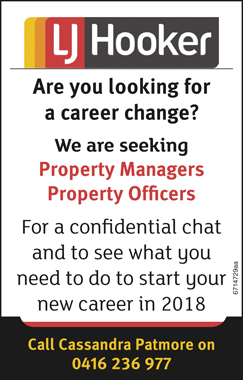 Are you looking for