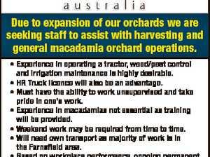 Harvesting Staff