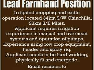 Lead Farmhand Position Irrigated cropping and cattle operation located 34km S/W Chinchilla, 28km S/E Miles. Applicant requires irrigation experience in manual and overhead systems and operation of pumps. Experience using row crop equipment, header and spray rig. Applicant needs to be hard working, physically fit and energetic. Email ...