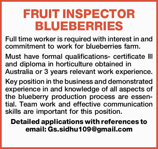 FRUIT INSPECTOR BLUEBERRIES