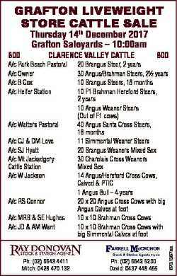 GRAFTON LIVEWEIGHT STORE CATTLE SALE CLARENCE VALLEY CATTLE A/c Park Beach Pastoral A/c Owner A/c B...