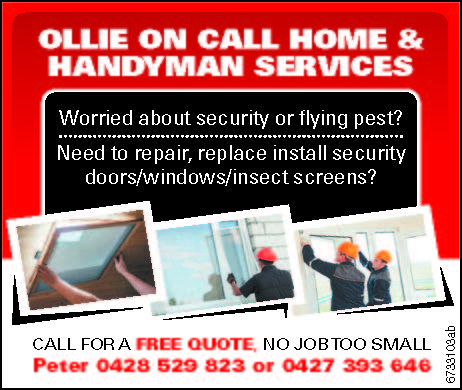 Worried about security or flying pest? 