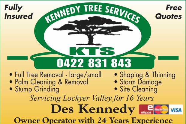 Fully Insured - Free Quotes     Full Tree Removal - Large & Small  Palm Cleaning...