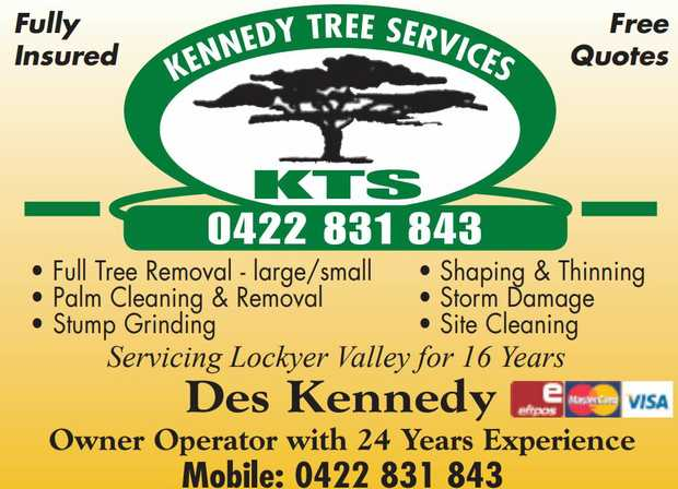 Kennedy Tree Service Fully Insured - Free Quotes Full Tree Removal - Large & Small Palm Clean...