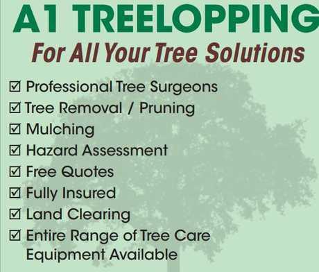 "<p align=""LEFT"" dir=""LTR""> <span lang=""EN-AU"">For All Your Tree...</span></p>"
