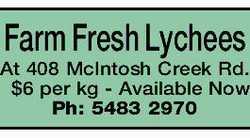 Farm Fresh Lychees At 408 McIntosh Creek Rd. $6 per kg - Available Now Ph: 5483 2970