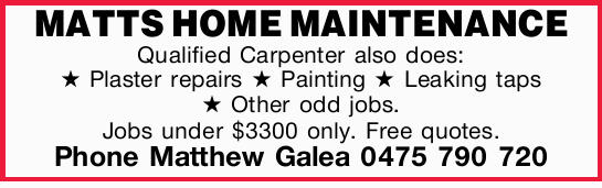 Qualified Carpenter also does:    Plaster repairs  Painting  Leaking taps...