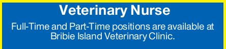 Full-Time and Part-Time positions are available at Bribie Island Veterinary Clinic.   Resume...