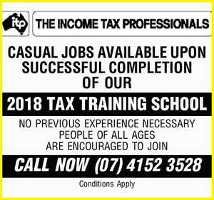 THE INCOME TAX PROFESSIONALS