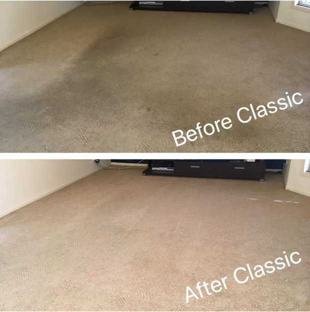 Professional Carpet Cleaning in Logan and Brisbane's Southside