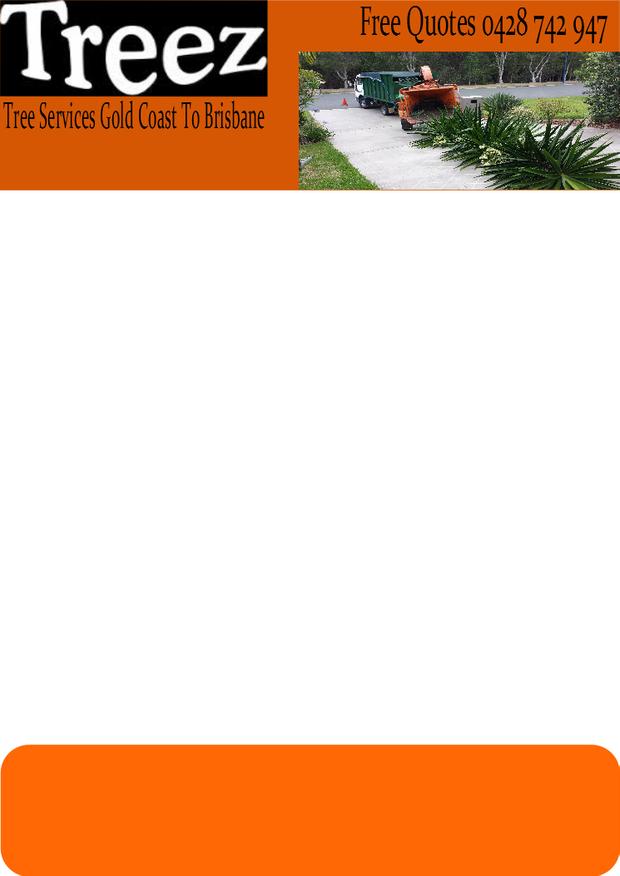 Welcome to Treez Tree Services Gold Coast to Brisbane      Treez is aTree Ser...