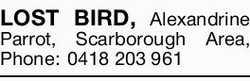 LOST BIRD,   Alexandrine Parrot, Scarborough Area,   Phone: