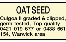 OAT SEED Culgoa II graded & clipped, germ tested, Top quality