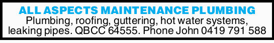 Plumbing, roofing, guttering, hot water systems, leaking pipes. 