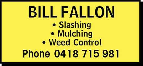 <p> <strong>- Slashing</strong> </p> <p> <strong>- Mulching</strong> </p> <p> <strong>- Weed...</strong></p>