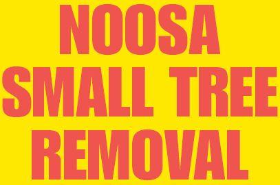 NOOSASMALL TREEREMOVAL   0407 060 125   www.NoosaSmallTreeRemoval.com.au   FULLY INSU...
