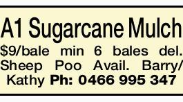 <p> A1 Sugarcane Mulch $9/bale min 6 bales del. </p> <p> Sheep Poo also...</p>