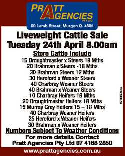 80 Lamb Street, Murgon Q. 4605 Liveweight Cattle Sale Tuesday 24th April 8.00am Numbers Subject To W...
