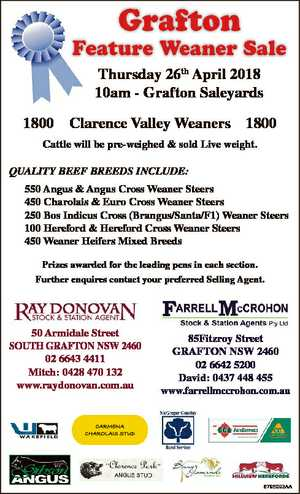 Grafton Feature Weaner Sale Thursday 26th April 2018 10am - Grafton Saleyards 1800 Clarence Valley...