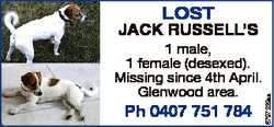 Lost 1 male, 1 female (desexed). Missing since 4th April. Glenwood area. Ph 0407 751 784 6797239aa J...