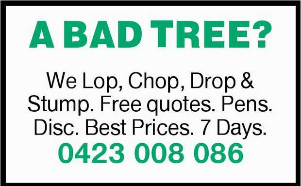A BAD TREE?