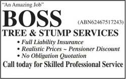 BOSS Tree & Stump Services    Full Liability Insurance  Realistice Prices  P...