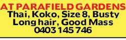 Thai, Koko, Size 8, Busty Long hair   Good Massage   0403 145 746