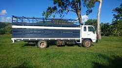 ISUZU FSR650 long cattle truck,  1992,  diesel,  regd 2/19,  521,000kms,...