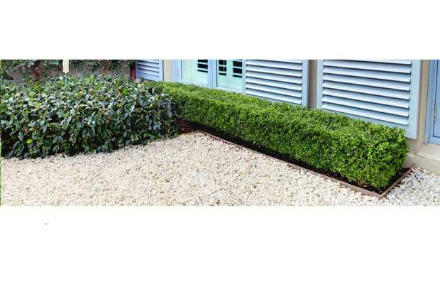 Expert Pruningand Trimming of Plants & Trees  Irrigation Installation & Re...