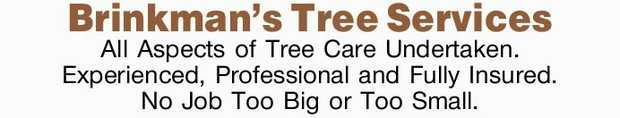 All Aspects of Tree Care Undertaken.