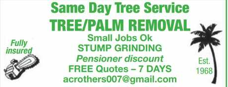 <p> <strong>TREE / PALM REMOVAL</strong> </p> <p> Small Jobs Okay </p> <p> STUMP...</p>