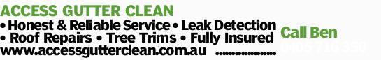 ACCESS GUTTER CLEAN   Honest & Reliable Service   Leak Detection   Roof Repairs ...