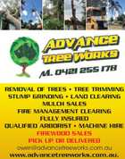 Advance Tree Works