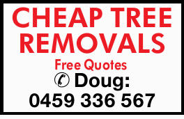 CHEAP TREE REMOVALS