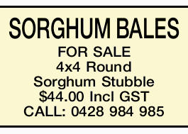 SORGHUM BALES FOR SALE