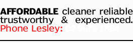 AFFORDABLE cleaner
