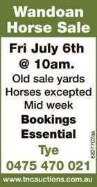 Wandoan Horse Sale