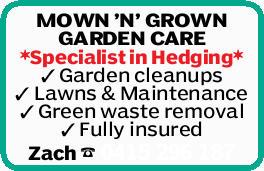 MOWN 'N' GROWN GARDEN CARE   *Specialist in Hedging*   Garden cleanups   Lawn...