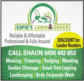 PROFESSIONAL ∙ RELIABLE ∙ AFFORDABLE ∙ INSURED   Beautify Your Outdoor Space    Mowing...