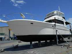 SPORTFISHERMAN 48ft, 2x Cat 435HP M/Brm + 2 Cabins, 2 bathrooms, air con, TV, fridge, oven, all n...