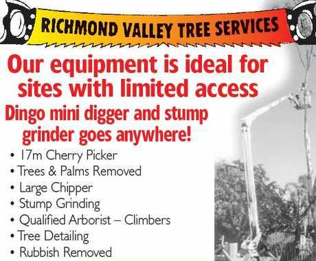 """<p align=""""LEFT"""" dir=""""LTR""""> <span lang=""""EN-AU"""">Richmond Valley Tree Services </span> </p>"""
