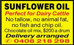 SUNFLOWER OIL Perfect for Dairy Cattle No tallow, no animal fat, no fish and chip oil. Chocolate...
