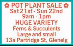 Sat 21st - Sun 22nd   9am - 1pm   HUGE VARIETY   Ferns & Succulents   Large a...