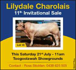 Lilydale Charolais 11th Invitational Sale This Saturday 21st July - 11am Toogoolawah Showgrounds Con...