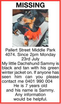MISSING   Pallert Street Middle Park 4074.   Since 2pm Monday 23rd July   My little D...